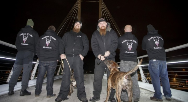 z5 Soldiers-of-Odin-milices