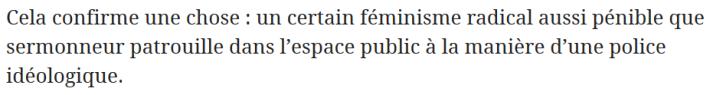 z5b féminisme radical policière