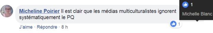 z3 médias multiculturalistes1