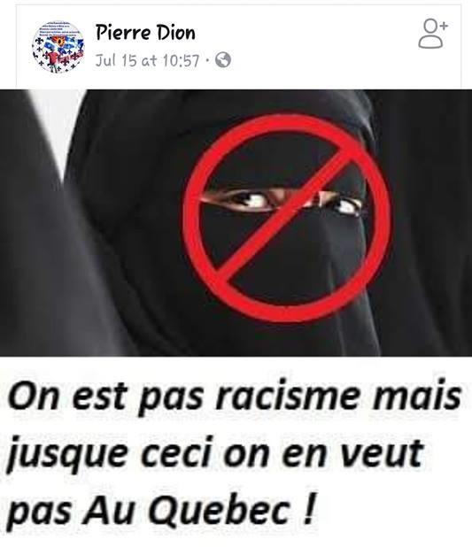 z5aaab pierre dion racisme