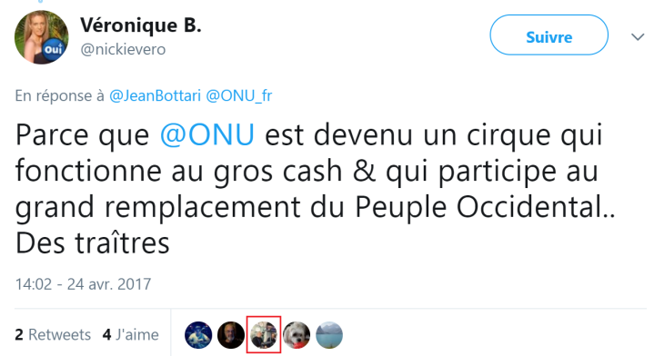 z6 ONU grand remplacement